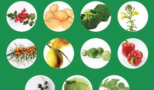 Kdoplnění vitamínu C se citrusy moc nehodí
