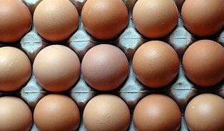Vitalia.cz: Salmonela: Řetězce stahují milióny rizikových vajec