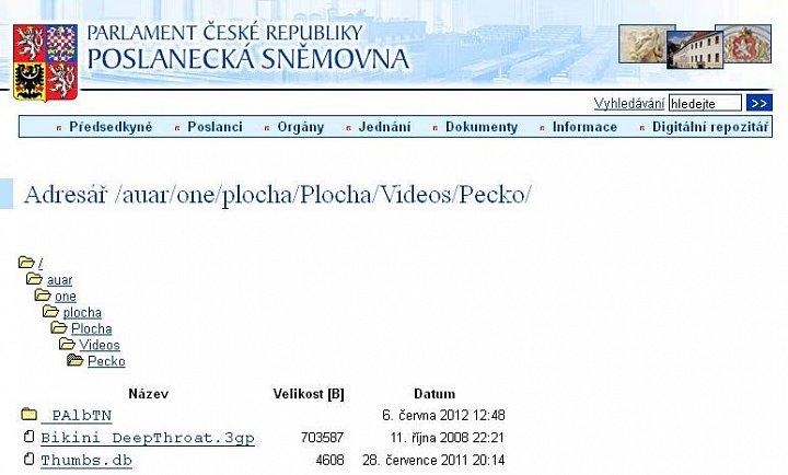 Poplatek porno stránky