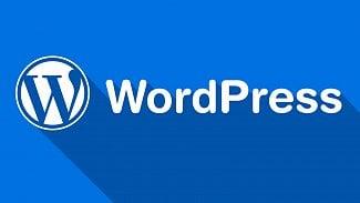 Root.cz: WordPress má chybu, musíte ji ručně opravit