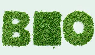 Průzkum: kdo unás kupuje biopotraviny?
