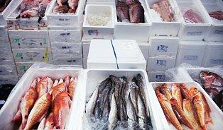 Drahé rybí maso? Mýtus