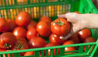 Řetězce šikanují farmářské obchody