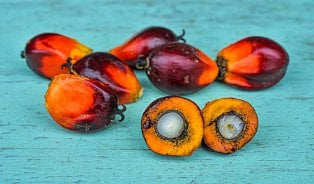 Zájem opotraviny bez palmového oleje roste. Kde je seženete?