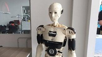 Root.cz: Robot, i dinosaurus v komunitní dílně