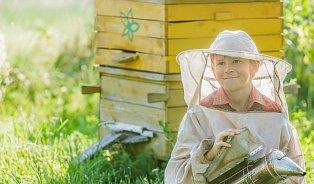 Propolis– včelí antibiotikum