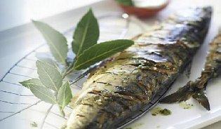 7tipů pro grilování ryb