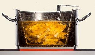 Test tuků aolejů: Jak to vidí technolog