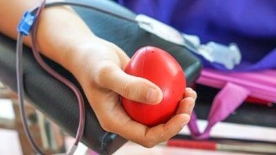 Lze pøi výpoètu pojistného na zdravotko uplatnit èástku za dárcovstvíkrve?