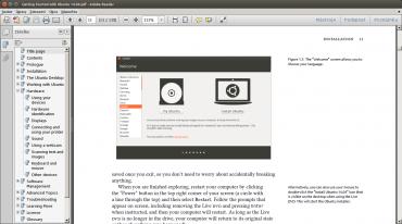 Adobe Reader 11. Pro Linux není, ale ve Wine běží obstojně