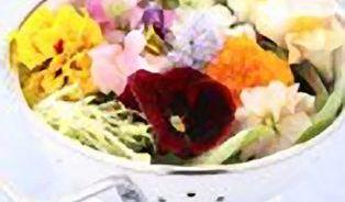 Které květiny se dají jíst?