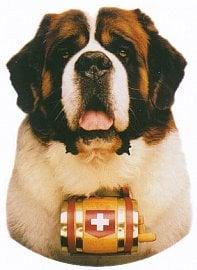 Winterthur pojišťovna svoji komerční prezentaci představovala na švýcarském bernardýnovi, jakožto symbolu mohutnosti, dobrosrdečnosti, odvahy a zachránci.  A vybraným klientům k pojistkám rozdávala malé plyšové bernardýny.