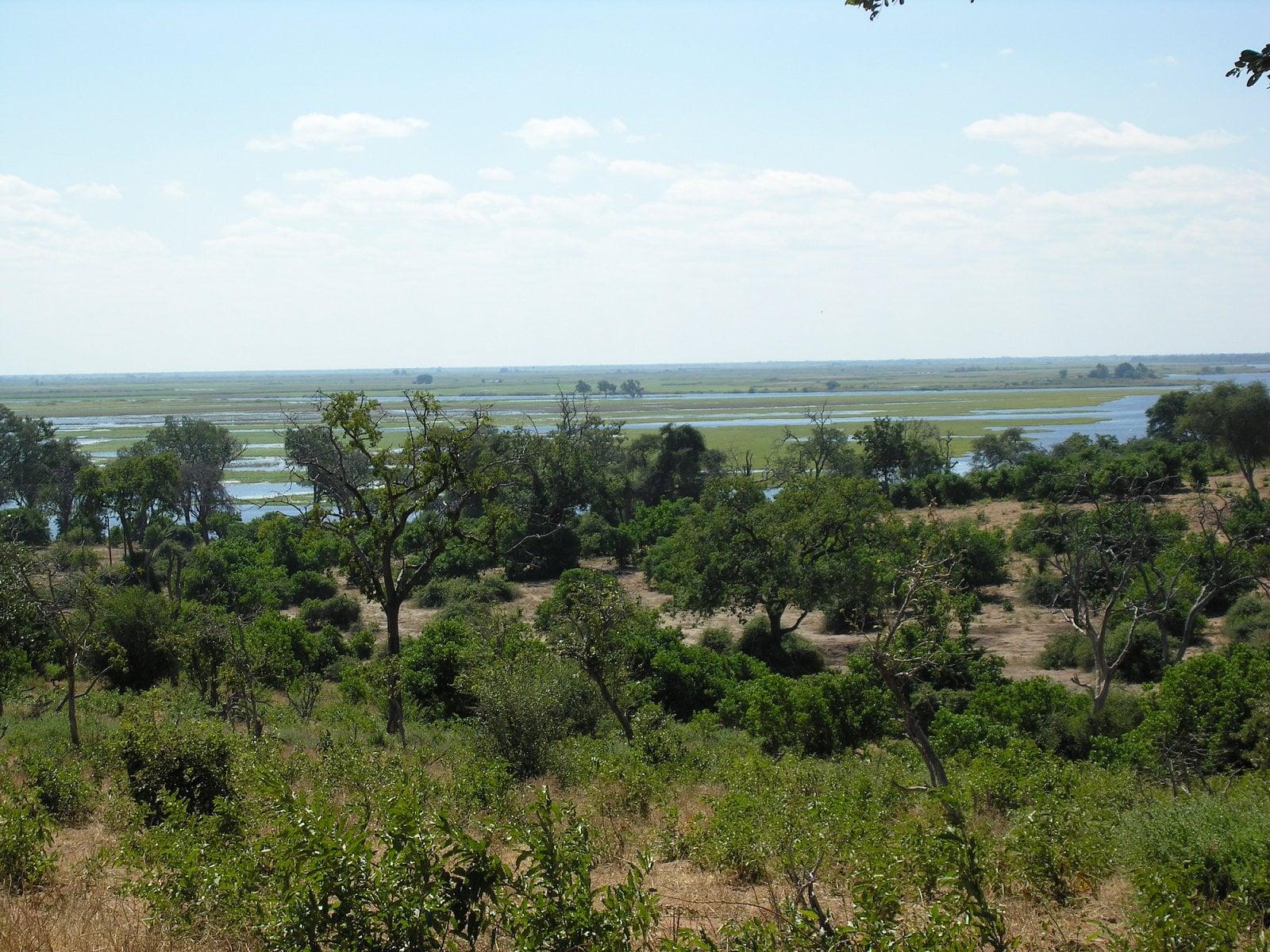 Botswana, Chobe
