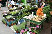 Farmářské tržiště Kulaťák