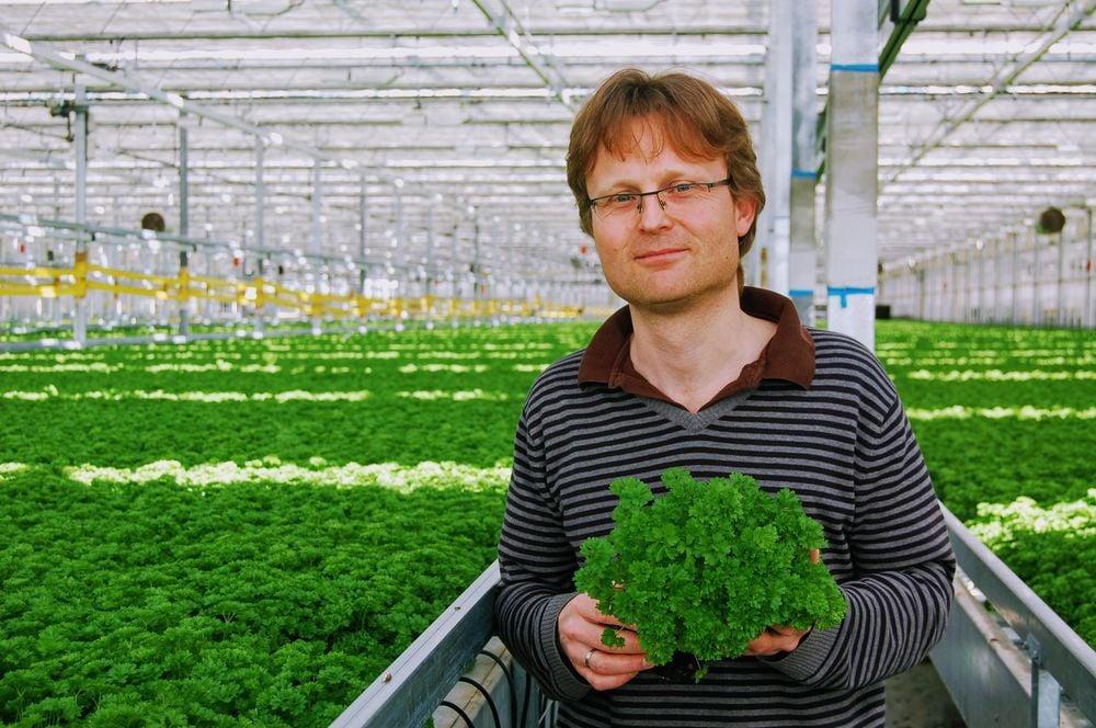 Bylinky s.r.o.: Z Moravy do supermarketů