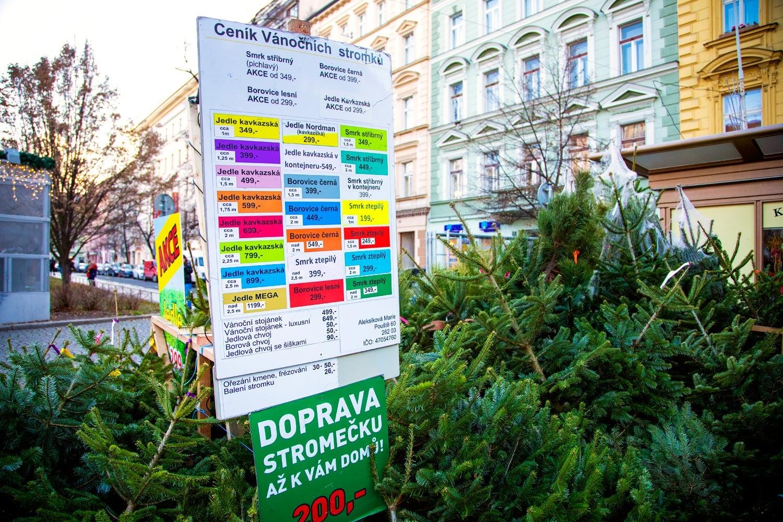 Prodej vánočních stromků 2019