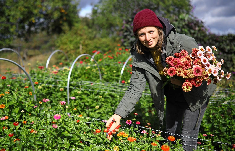 Založili květinovou farmu. Podívejte se, jak květiny pěstují