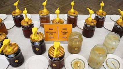 Vitalia.cz: Jak se stát degustátorem medu