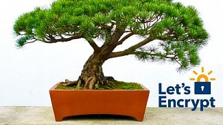 Let's Encrypt bonsai