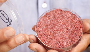 Umělý hamburger způsobí rozvojovému světu ještě většípotíže