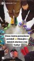 V agentuře Besteto ukazují ve Stories ponožkový den