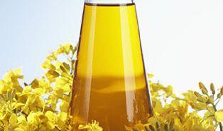 Řepkový olej– všestranný kuchyňský pomocník