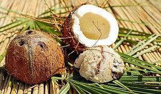 Jak se dostat do mladého kokosu?