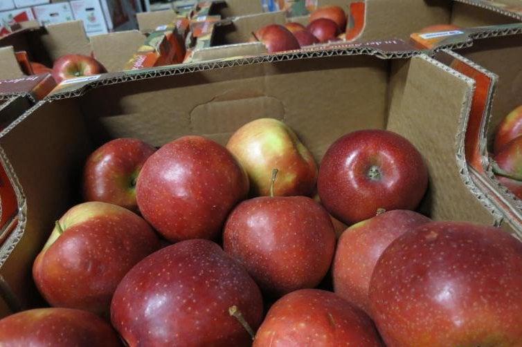 Pesticidy v ovoci a zelenině 2018
