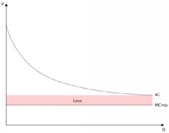 Graf 1: p - cena, Q - prodané množství, MC - mezní náklady na vyrobení jedné kopie, AC - průměrné náklady zahrnující počáteční investici rozloženou dle počtu prodaných kopií, p0 - cena kopie stlačená konkurencí na hodnotu MC, Loss - ztráta tvůrce odpovídající počíteční investici