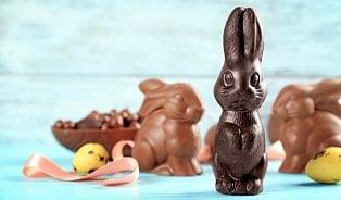 dTest našel velikonočního zajíce zfalešné čokolády