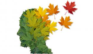 Alzheimer, stárnutí a trocha naděje