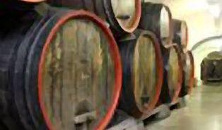 Léčebná vína a kosmetika bez chemie vznikají ve sklepě činžáku