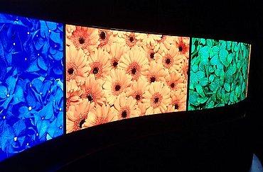 Prototypové OLED byly představeny v ploché i v dvojí zakroucené podobě.