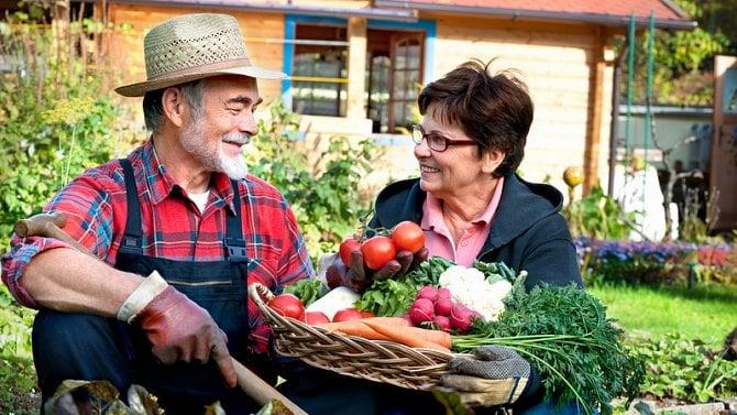 Stánkový prodej pøebytkù ovoce a zeleniny usilnic. Struènì a pøehlednì