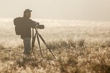 Při focení jelenů v Dánsku