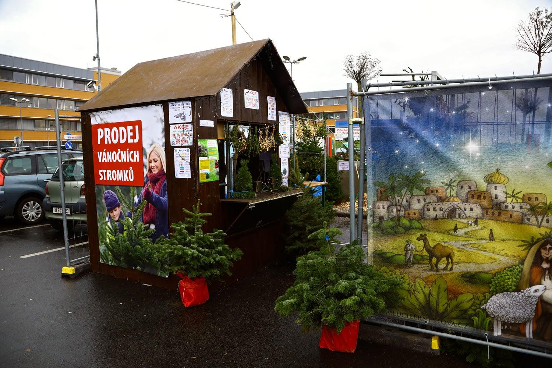 Prodej vánočních stromků 2018