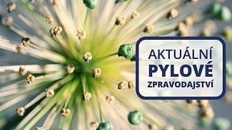 120na80.cz: Pylové zpravodajství (aktualizováno 19.7.)
