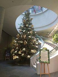 Strom pro lepší život na centrále Kooperativa