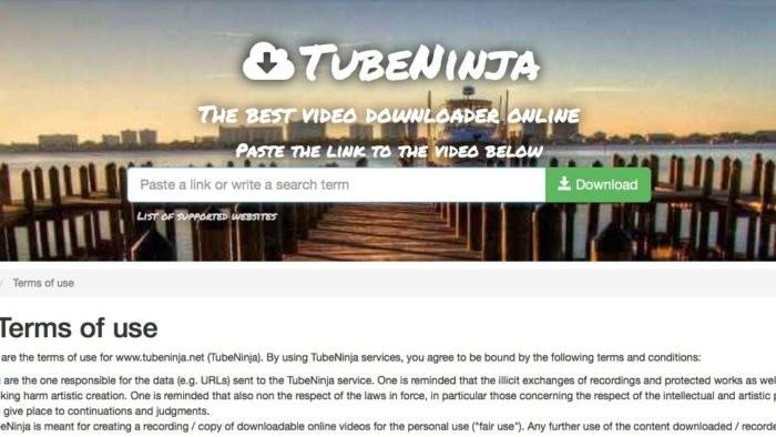 Podmínky používání takových služeb, jako je například služba TubeNinja pro stahování videí z YouTube, často obsahují formulaci v tom smyslu, že stahování videí chráněných autorským právem z YouTube je zcela na vaši zodpovědnost
