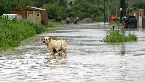Digitální rozhlas může být užitečný v době povodní, věří Marcel Procházka