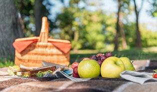 Vitalia.cz: Alergie: Které potraviny nebrat na piknik?