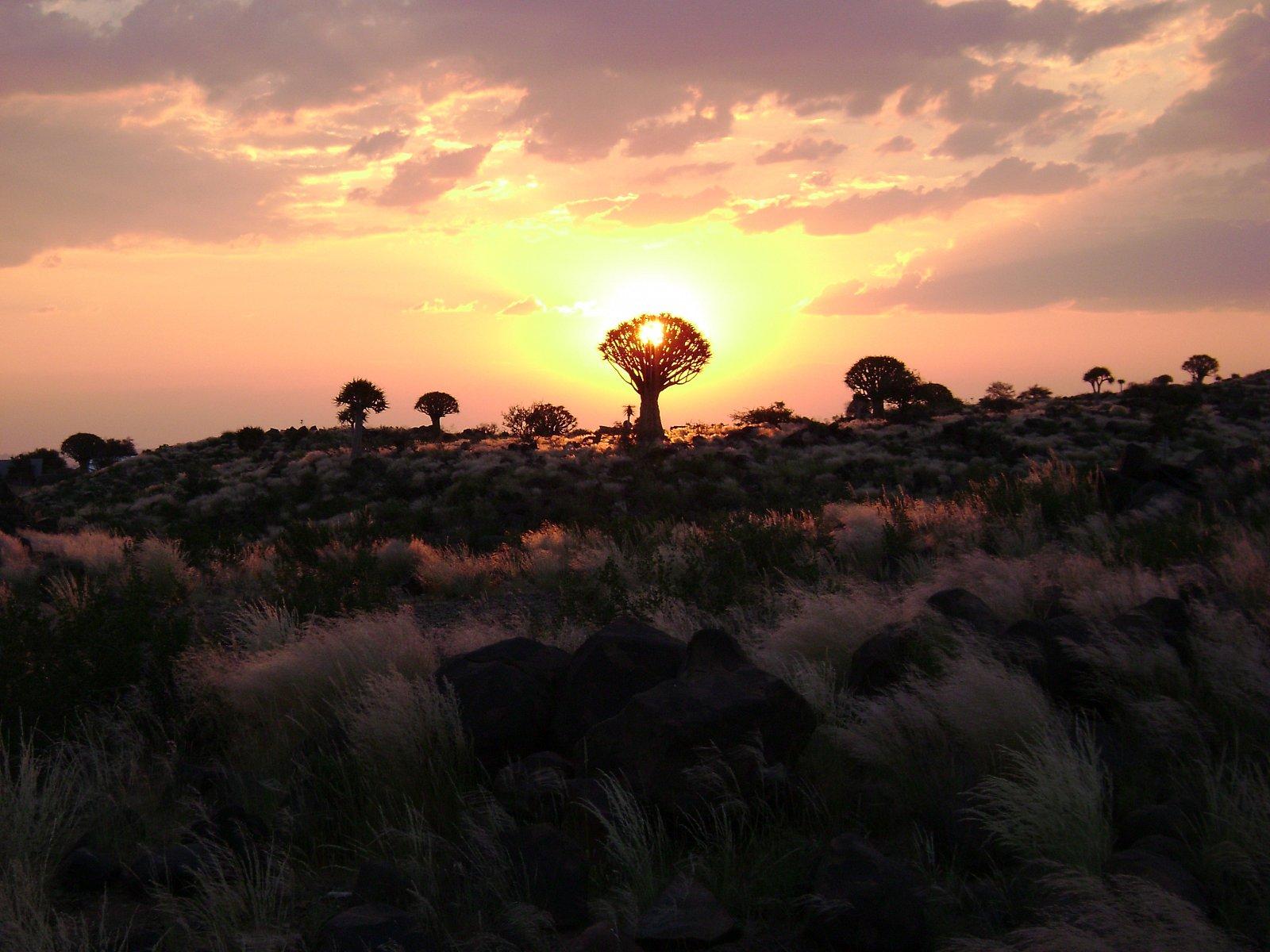 Cyklus Fascinující příroda na dokumentárním kanálu Prima Zoom