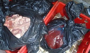 Vtržnici SAPA mají opakované problémy shygienou potravin