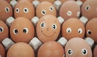 Česká vejce mohou být brzy raritou