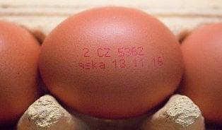Vitalia.cz: Zmatky kolem fipronilu: Co je bezpečné vejce