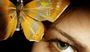 Motýl v nás aneb Moc podvědomí, nebo síla rozumu?