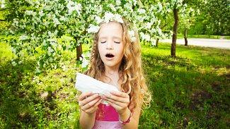 Léčba alergie: pomohou ivolně prodejné léky