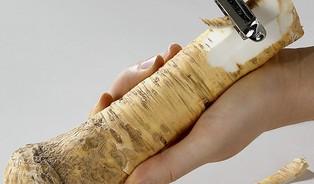 Léčivá moc křenu