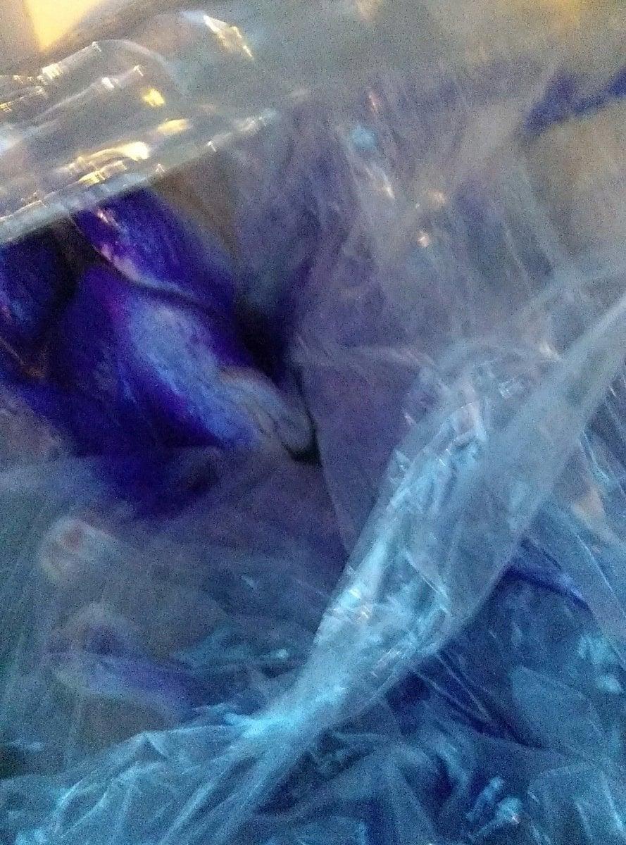Veterináři odhalili nelegální pojízdnou prodejnu drůbeže