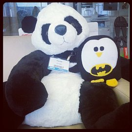 Postrach webmasterů: Google Panda a tučňák